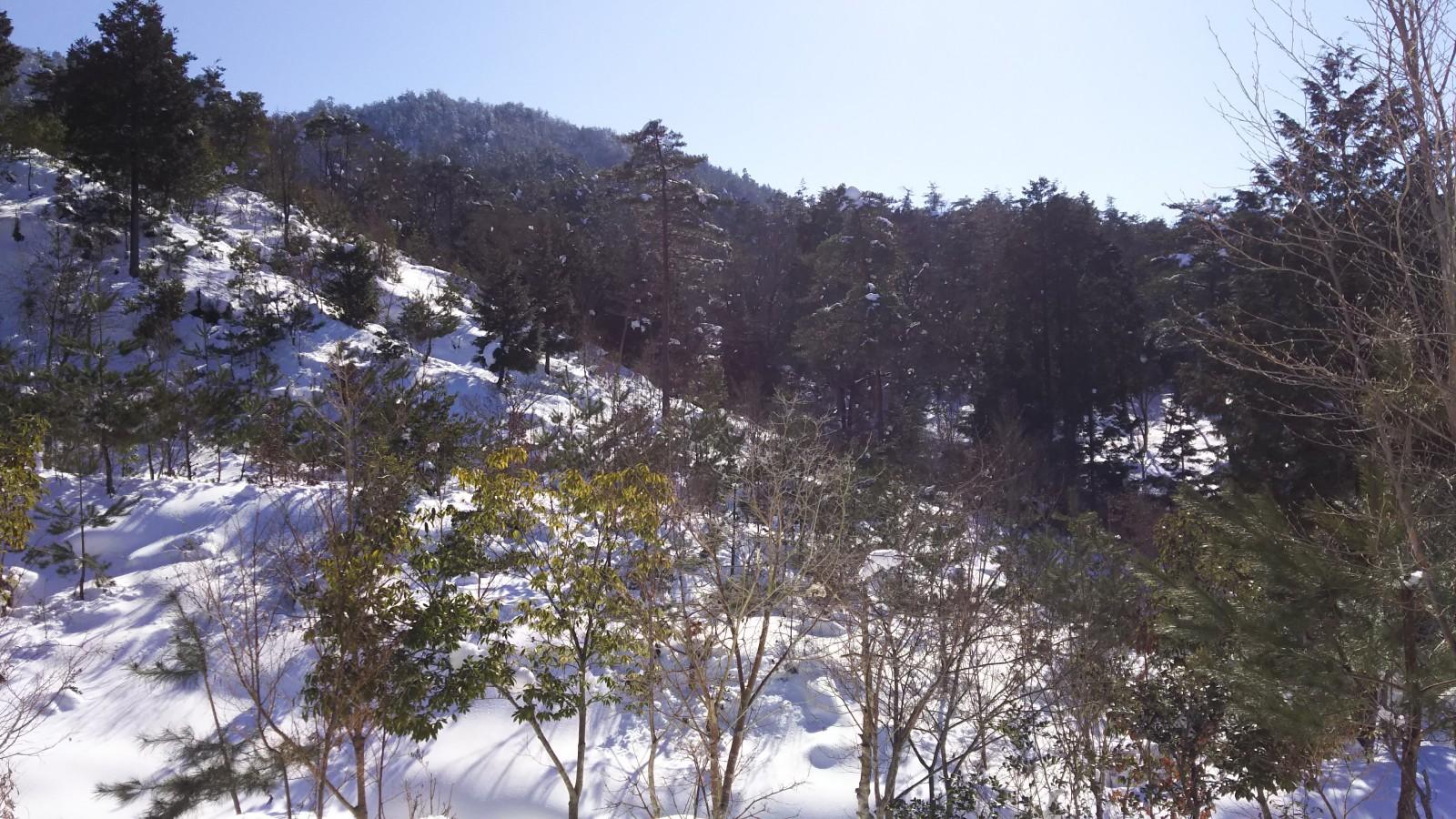 DSC_0045 © 高取山ふれあい公園